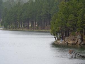 nice spot to fish!