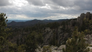 amazing views on Needles Hwy