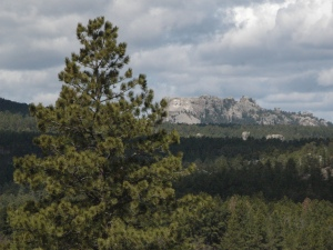 Black Hills & Presidents