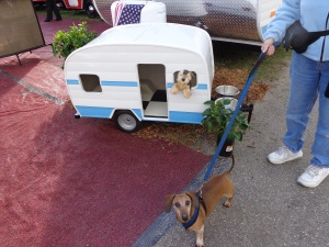 doggie trailers
