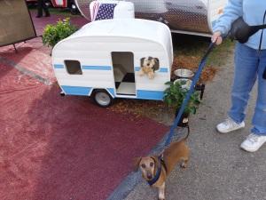 doggie trailers