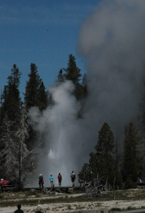 Grand Geyser viewed from Castle Geyser