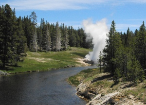 Riverside Geyser downstream